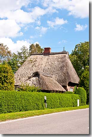 Reetdachhaus In Borentwedt
